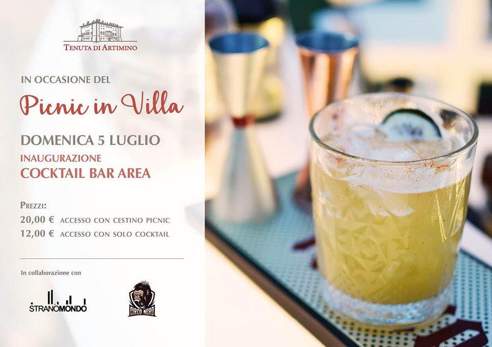 Cocktail in Villa