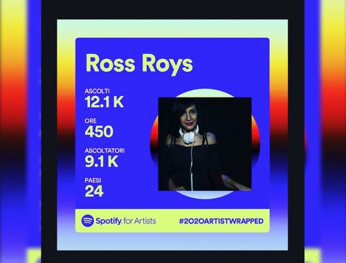 Ross Roys thewindow